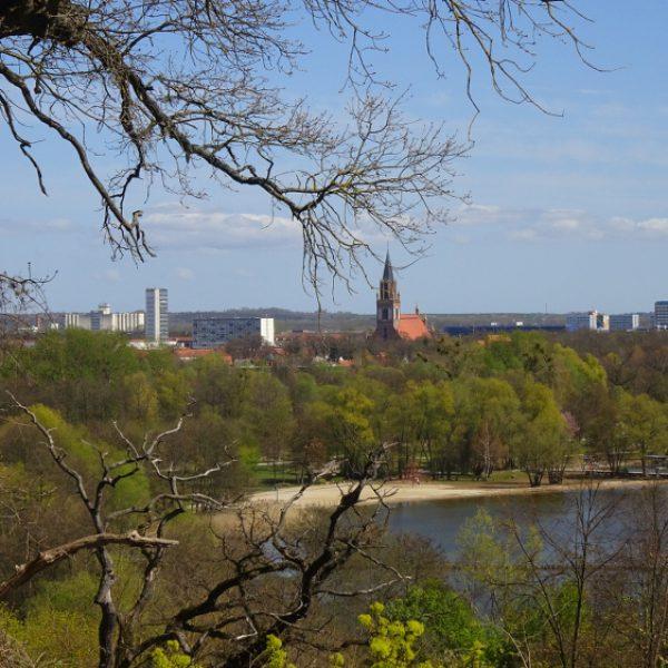 Blick von Belvedere