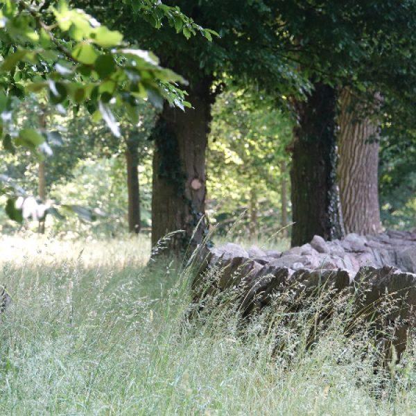 Der Schlosspark ist von einer Trockenmauer umgrenzt