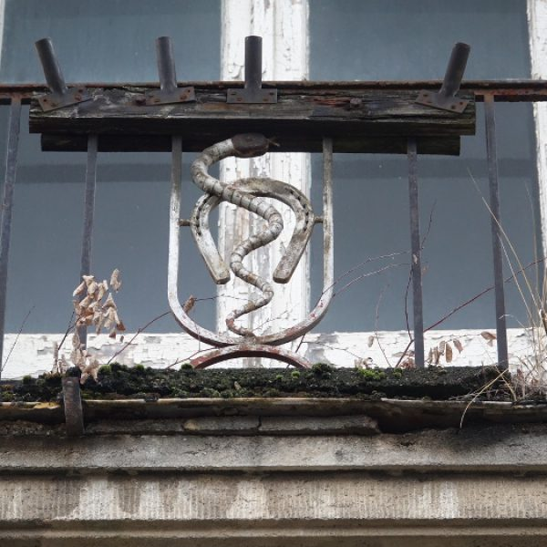 Fahnenträger am Balkon der Tierklinik