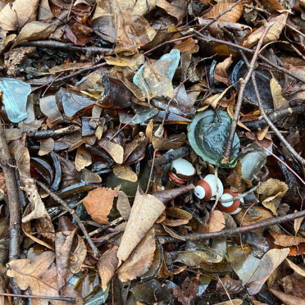 Scherbenboden im Wald