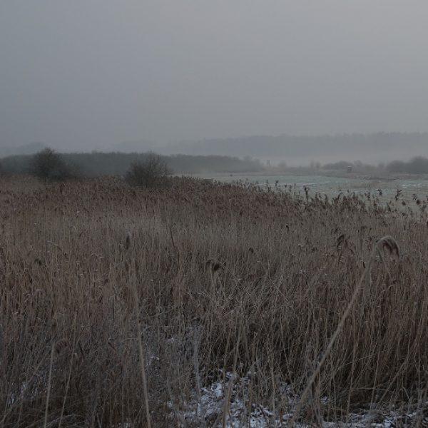 riesige Feuchtgebiete im Morgennebel